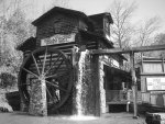 Dollywood: In Black and White